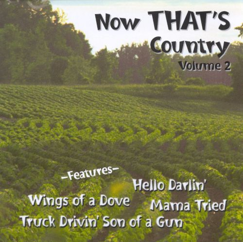 Now That's Country, Vol. 2