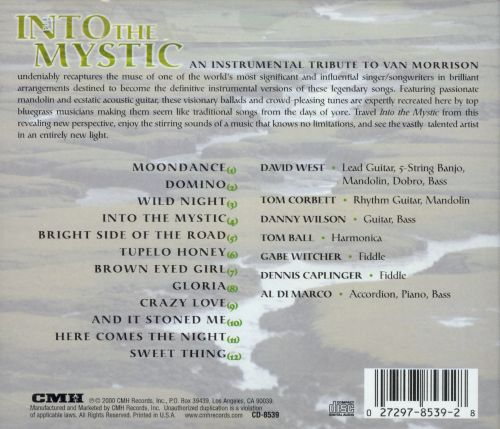 Into the Mystic: An Instrumental Tribute to Van Morrison