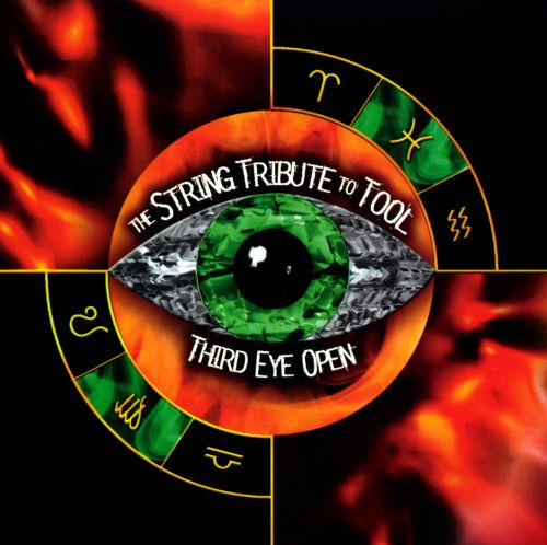 Third Eye Open: The String Tribute to Tool