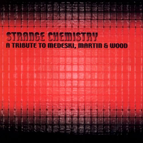 Strange Chemistry: The Tribute to Medeski, Martin & Wood