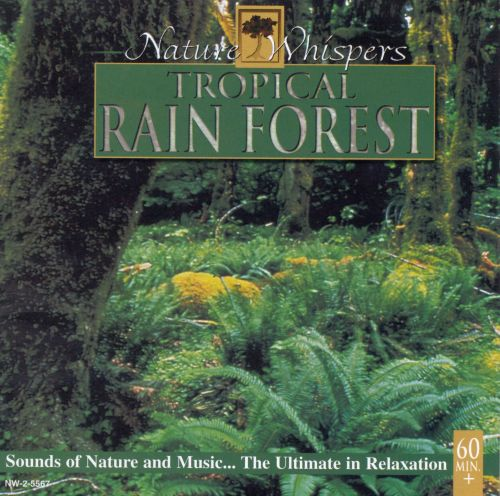 Nature Whispers: Tropical Rainforest