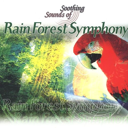 Rainforest Symphony Soothing Sounds