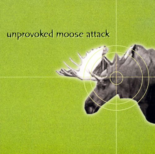 Unprovoked Moose Attack