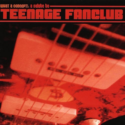 What a Concept!: Tribute to Teenage Fanclub