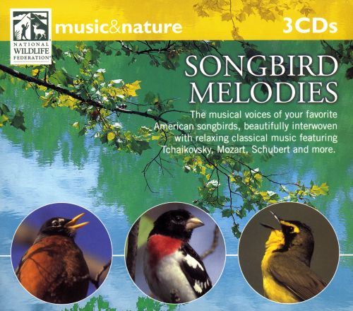Music and Nature: Songbird Melodies