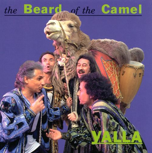 The Beard of the Camel