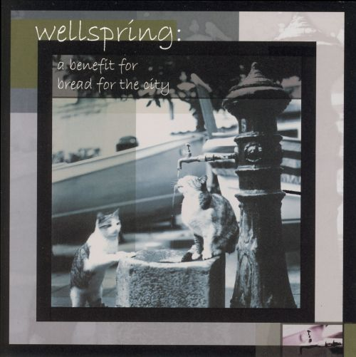 Wellspring: A Benefit For the City