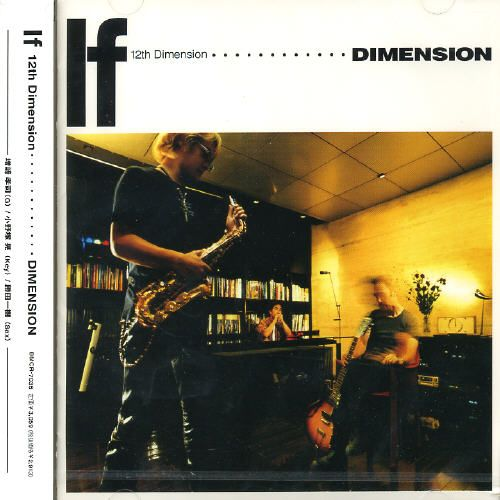 12th Dimension: If