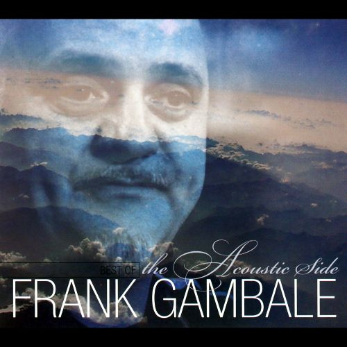 Best of Frank Gambale: Acoustic Side