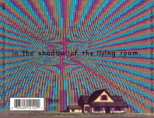 In the Shadow of the Living Room