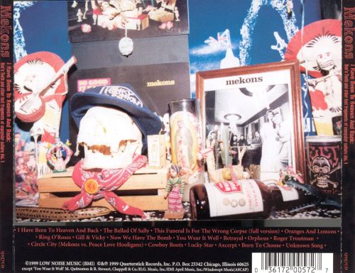 I Have Been to Heaven and Back:  Hen's Teeth and Other Lost Fragments of Un-Popular Culture Vol. 1
