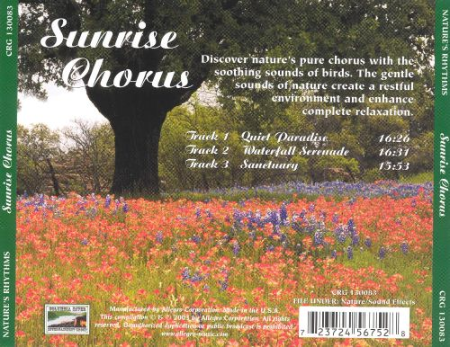Nature's Rhythms: Sunrise Chorus