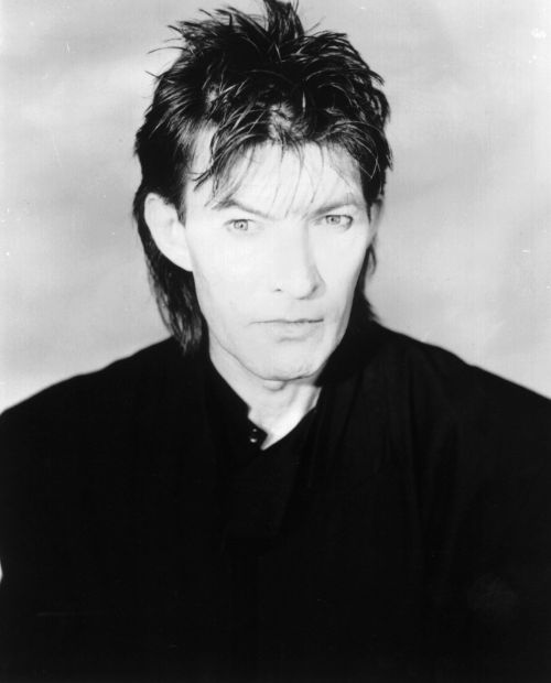 dave berry biography