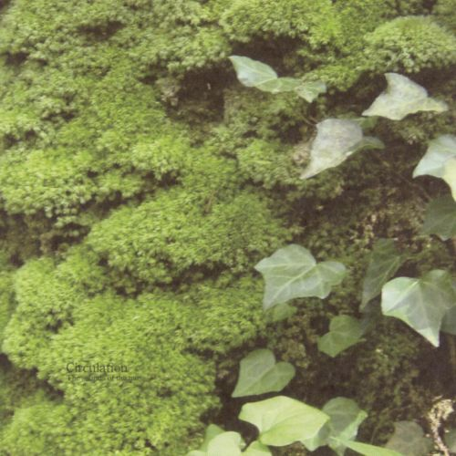 Circulation: The Sounds of the Moss