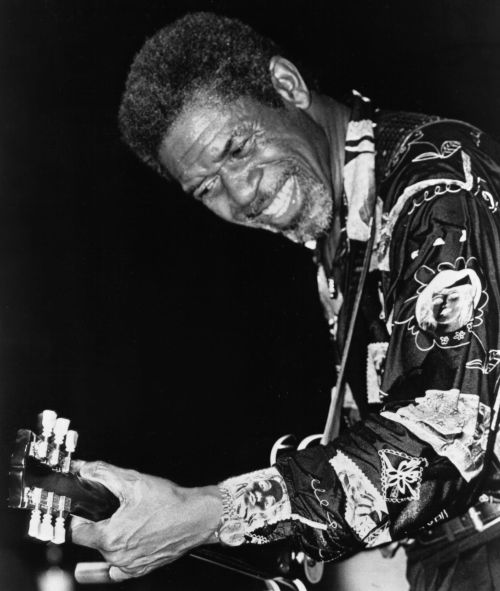 Bb king biography albums streaming links allmusic luther allison fandeluxe Choice Image