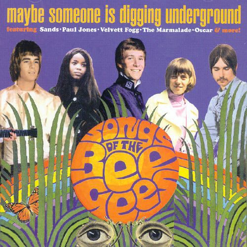 Maybe Someone Is Digging Underground: Songs of the Bee Gees