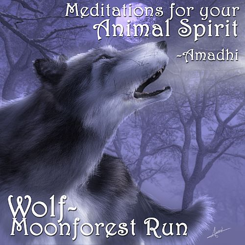 Meditations for Your Animal Spirit: Wolf - Moonforest Run