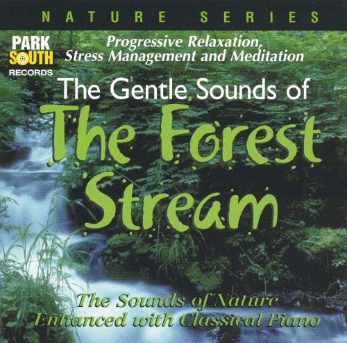 Nature Series: The Forest Stream