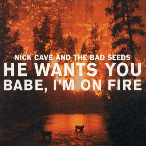 He Wants You/Babe I'm on Fire [UK CD]