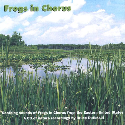 Frogs in Chorus