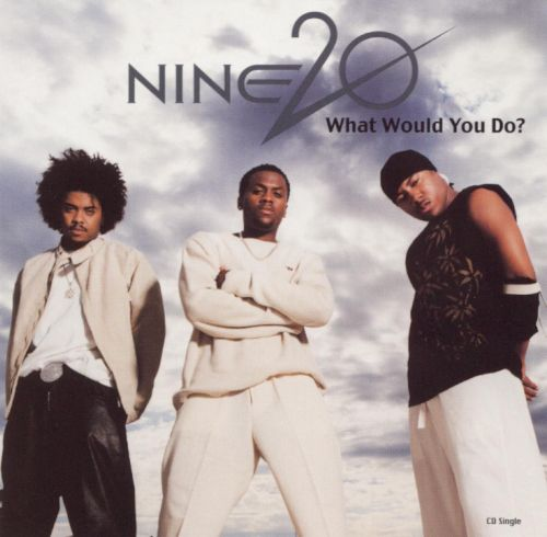 What Would You Do? [Promo Single]