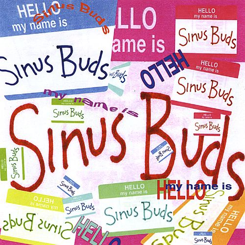 Hello, My Name Is Sinus Buds