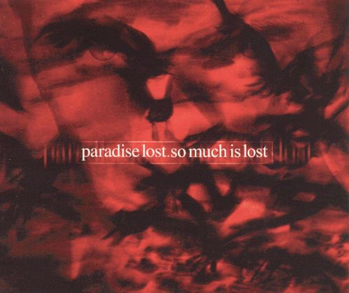So Much Is Lost