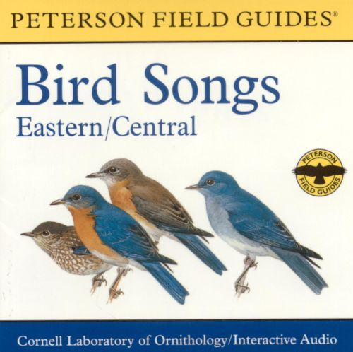 Bird Songs Easterncentral Various Artists Songs Reviews