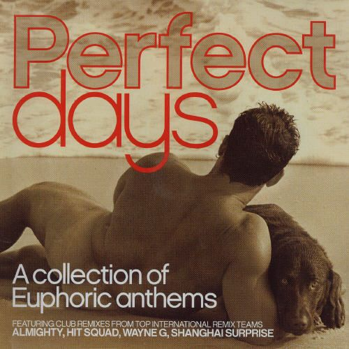 Perfect Days: A Collection of Euphoric Anthems