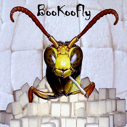 Bookoofly