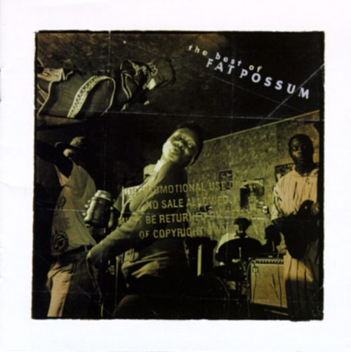 Mucho Mojo: Best of Fat Possum