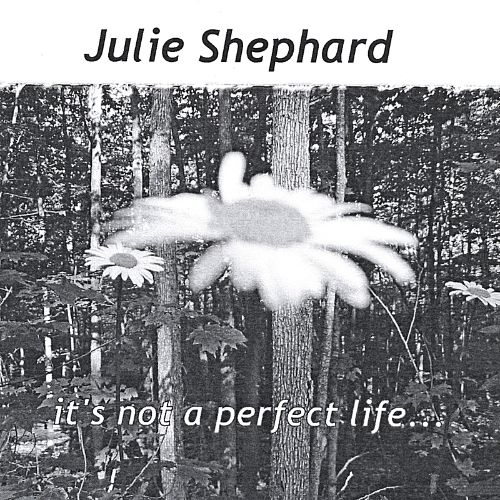 It's Not a Perfect Life...