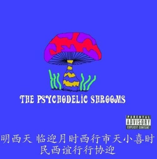 The Psychodelic Shrooms