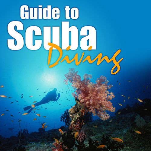 Guide to Scuba Diving