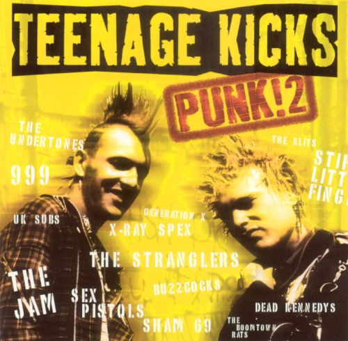 Teenage Kicks: Punk, Vol. 2