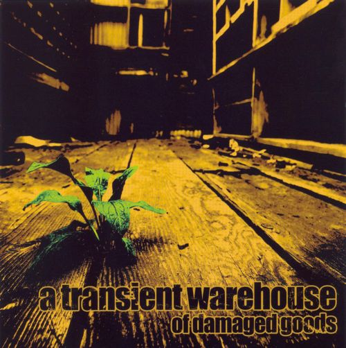 A Transient Warehouse of Damaged Goods