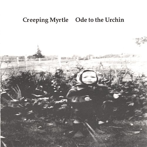 Ode to the Urchin