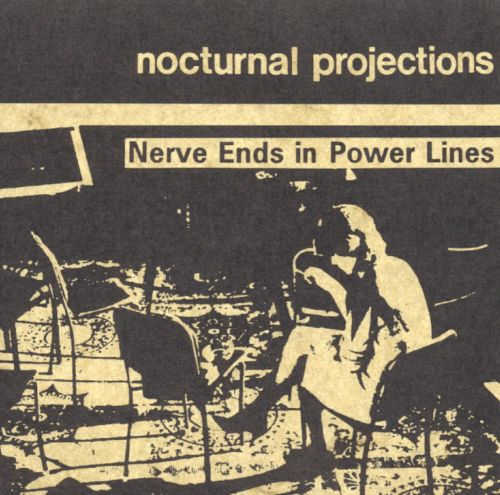 Nerve Ends in Power Lines