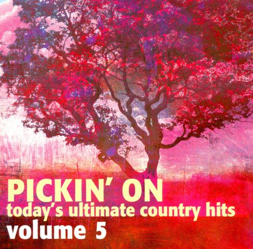 Pickin' on Today's Ultimate Country Hits, Vol. 5