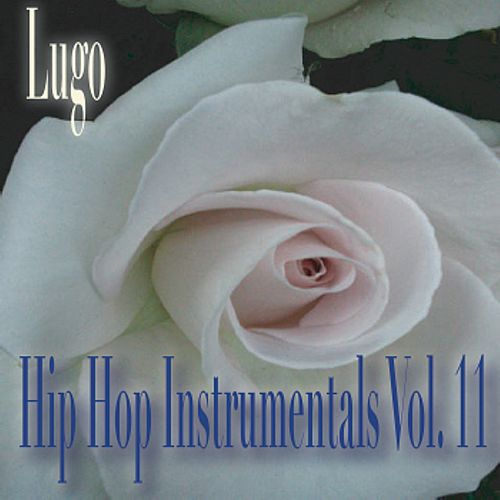 Hip Hop Instrumentals Vol. 11