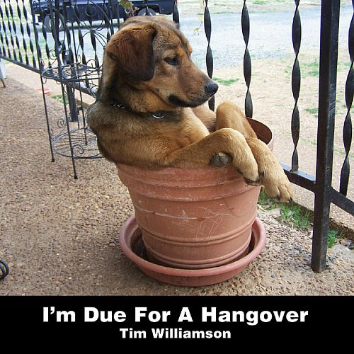I'm Due for a Hangover