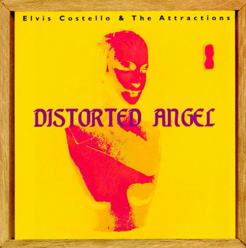 Distorted Angel