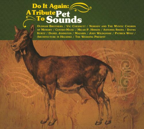 Do It Again A Tribute To Pet Sounds Various Artists Songs