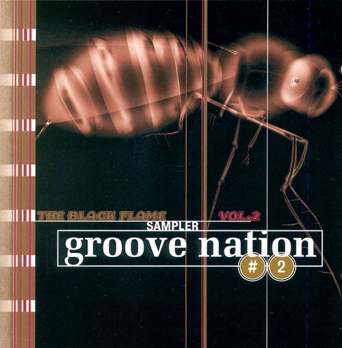 Groove Nation, Vol. 2