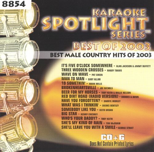 Best Male Country Hits of 2003