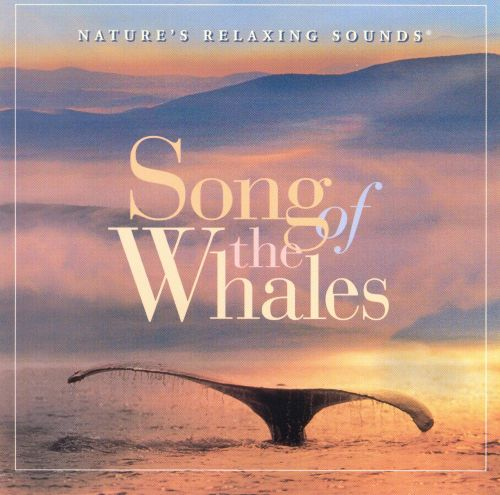 Song of Whales: Nature's Relaxing Sounds