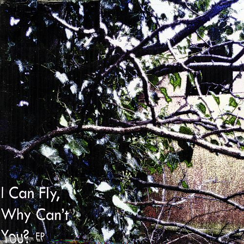 I Can Fly, Why Can't You?