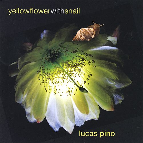 Yellow Flower with Snail