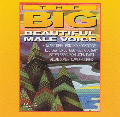 The Big Beautiful Male Voice