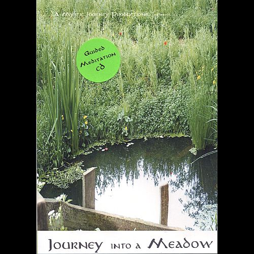 A Journey into a Meadow